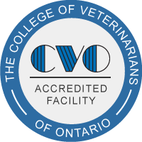 CVO Accreditation