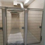 Cages Essa Veterinary Services Barrie