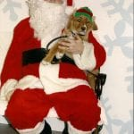 Eapi posing with Santa at Essa Veterinary Services in Barrie, Ontario