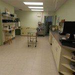 Main Table Essa Veterinary Services Barrie