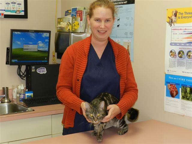 Melanie Briggs Essa Veterinary Services Barrie