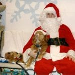 Christmas at Barrie Essa Veterinary Services with Presley the dog!